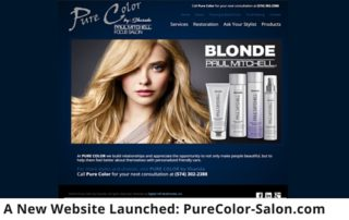 A New Website Launched_ PureColor-Salon.com 315