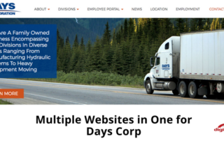 Multiple Websites in One for Days Corp-315