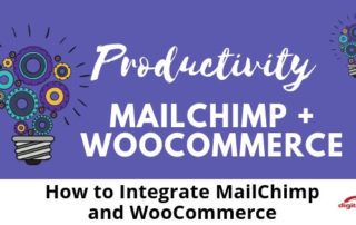 How-to-Integrate-MailChimp-and-WooCommerce-315