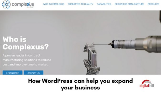 How-WordPress-can-help-you-expand-your-b-700